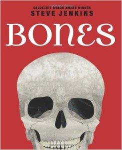 bones skeletons
